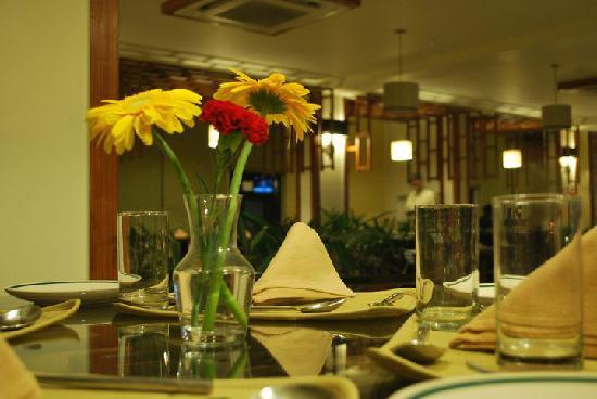 Udipi Restaurant-Namaste Dehradun