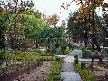 dating point in dehradun
