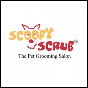 scooby-scrub-namaste-dehradun