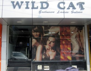 wild-cat-namaste-dehradun